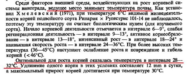 temperatyra rosta korney